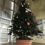 クリスマスを飾る