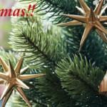 ★最終入荷★ 『2014年RSグローバルトレード・クリスマスツリー』