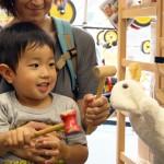 セミナー 5月26日(火)知育玩具で「デジタルデトックス 子育て」