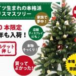 幻のツリー ドイツ・プラスティフロア社のクリスマスツリー byオーナー藤田