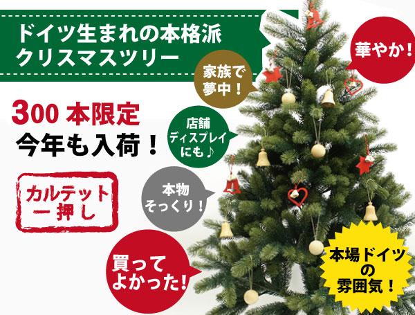 tree_main