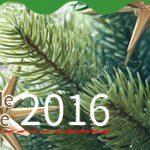 【入荷!】RSグローバルトレード社(ドイツ)のクリスマスツリーが入荷しました♪【2016年】