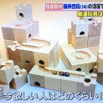 キュボロに注目! PON!|日本テレビに取材協力